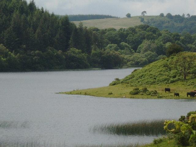 Shore of Woodhall Loch