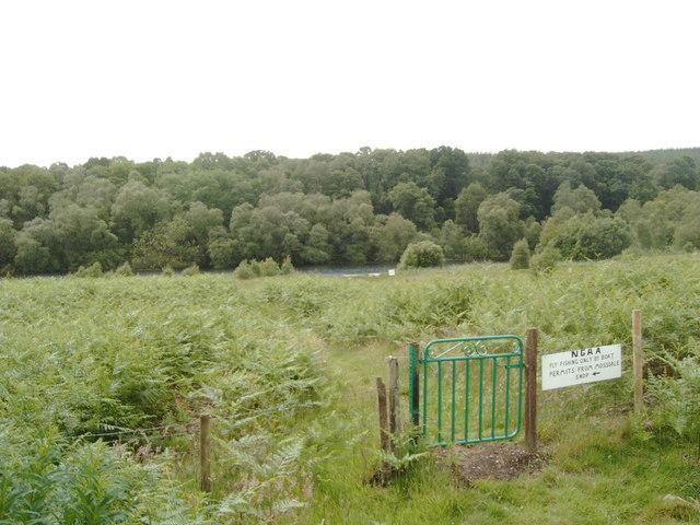 Gate near Mossdale Lock