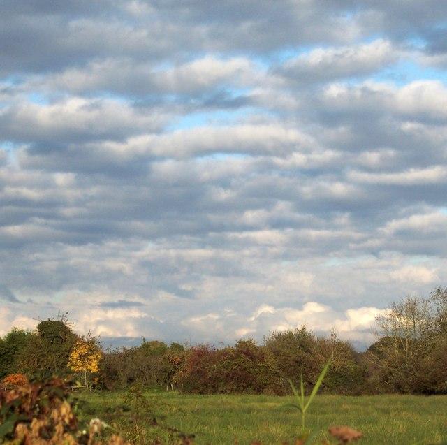 The Wilderness, Bishopstone