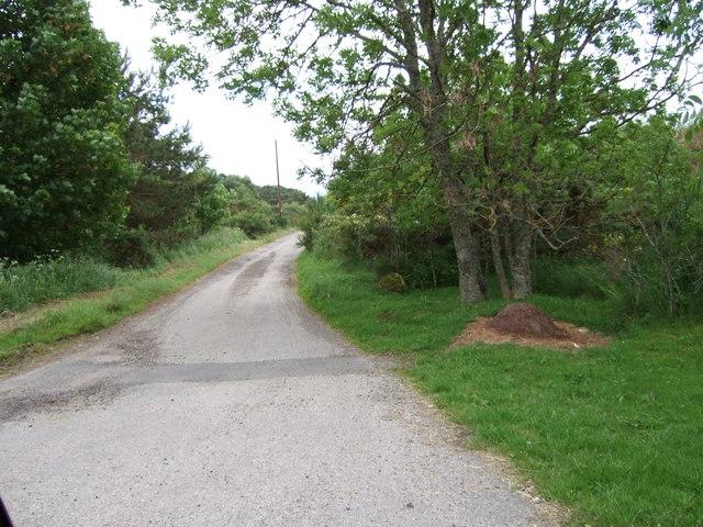 Lane to the River Brora