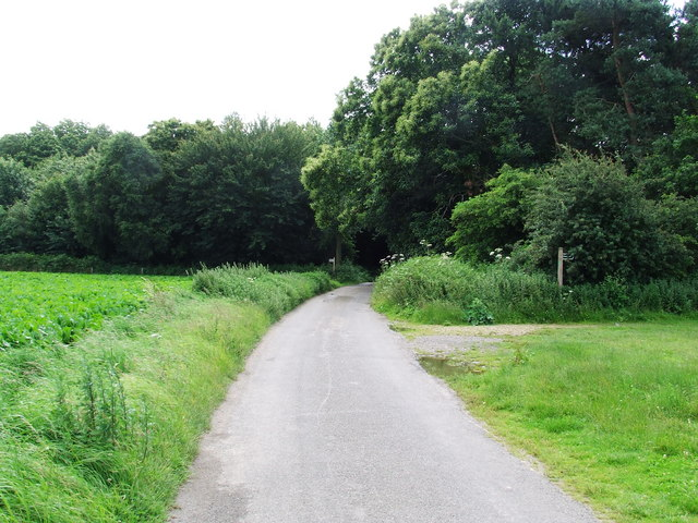 Looking East Along Grove Lane