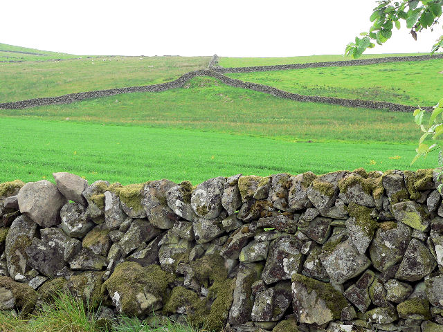 A pattern of stone walls