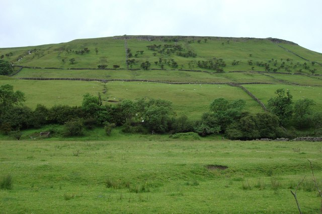 Looking up at High Bank, from the west side of the River Eden