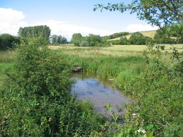 Chitterne Brook
