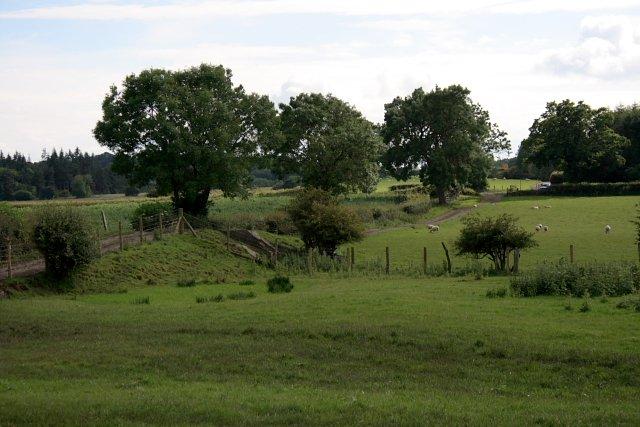 Course of Old Narrow Gauge Railway, Near Dunsdale Farm