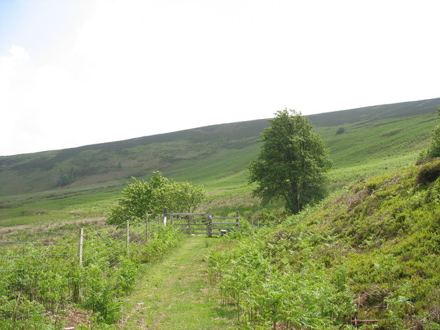 Stile at fence across the tramway