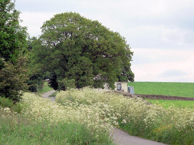 Cottage near Fardingjames