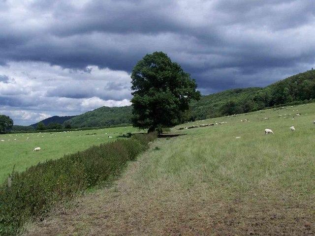 Near Wenlock Edge