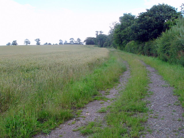 Bridleway at Woodend