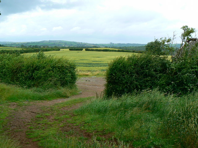 Farmland near Chelwood