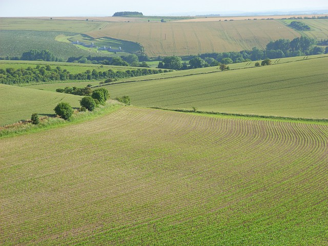 Farmland, Little Langford