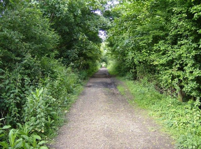 Old railway line near Brading