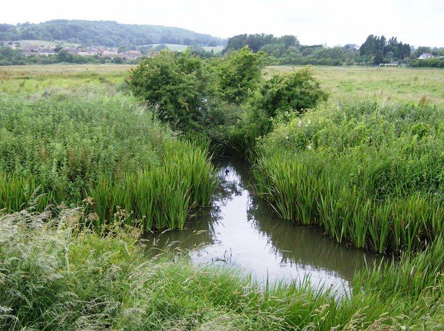 Dyke on Brading Marsh