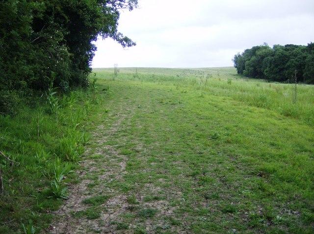 Bembridge and River Yar Trail