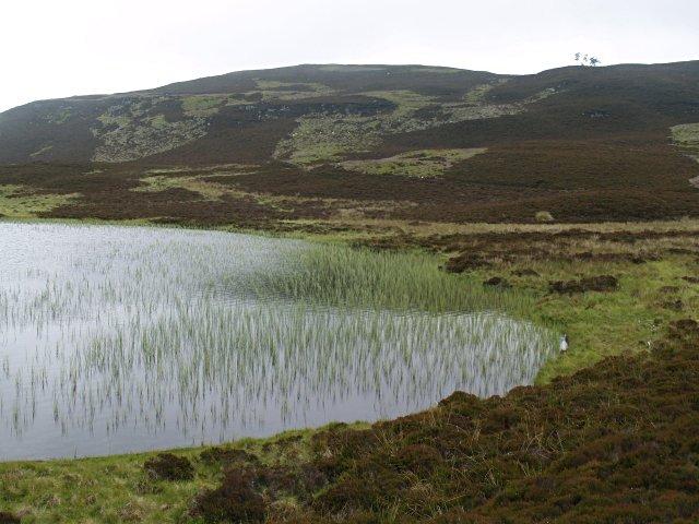 Lochan Oisinneach