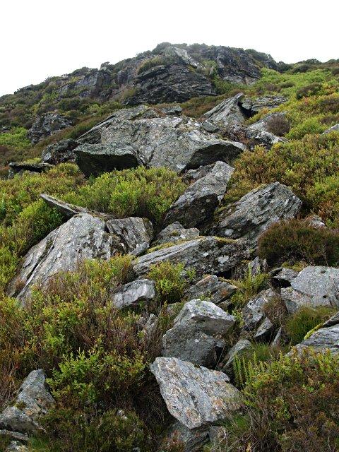 Boulderand heather slope