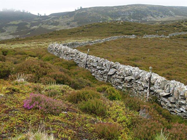 Dry stone wall above Lochan Oisinneach