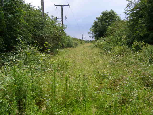 Dismantled railway track opposite Seaton Station
