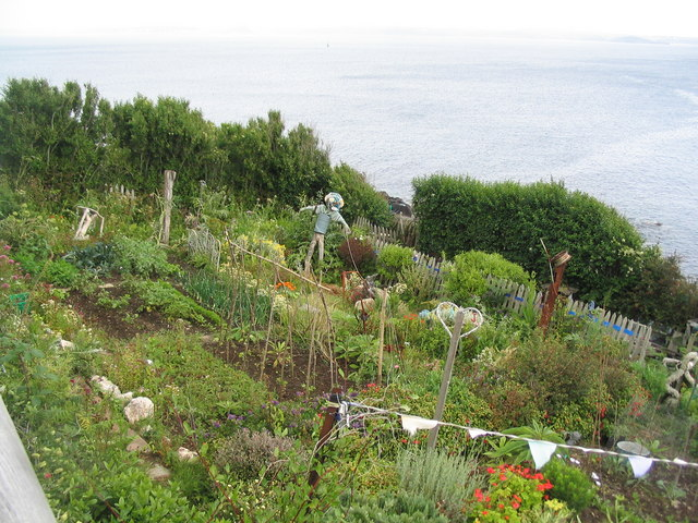 Allotments, Penlee Point
