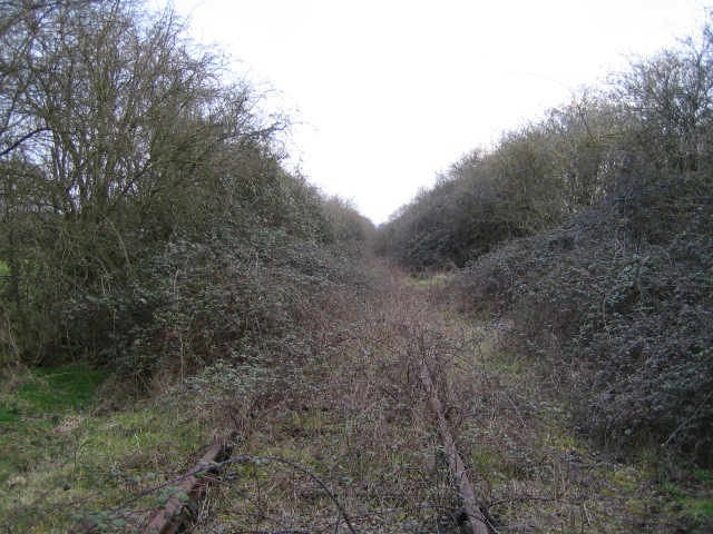 Disused railway line near Knapps Hook Farm 3