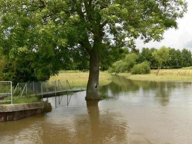 Flooding on Aylestone Meadows