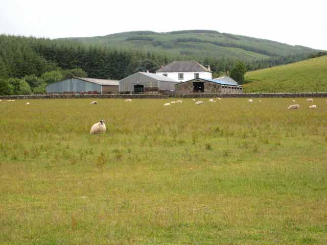 Homeston Farm and Lochorodale Forest