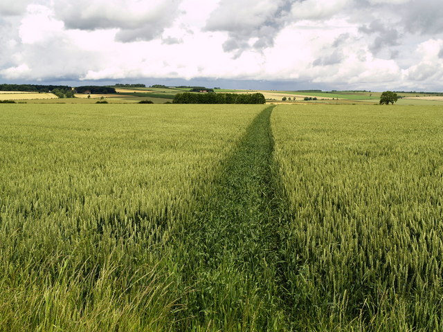 Footpath to the A166
