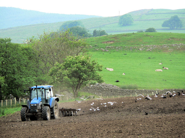 Tractor cultivations