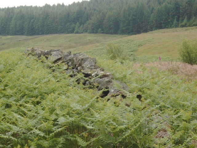 Rock wall near Lochenbreck Loch