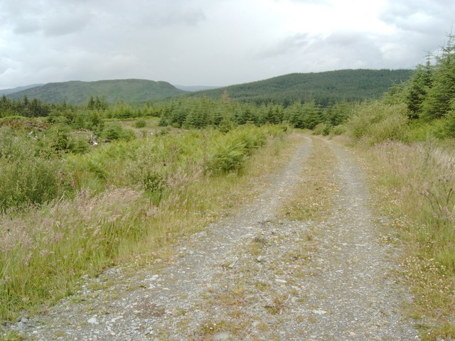 Forestry Road, Laurieston Forest