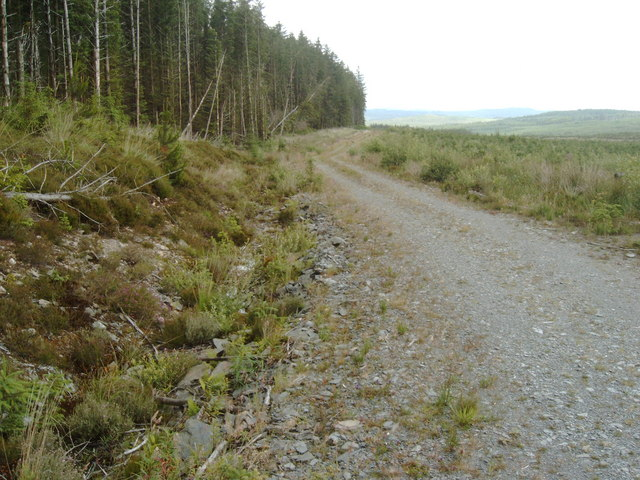 Forestry road in Laurieston Forest, near Slogarie Hill