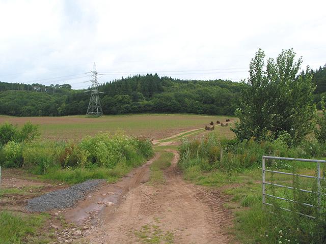 Farm track near Coleraine Farm