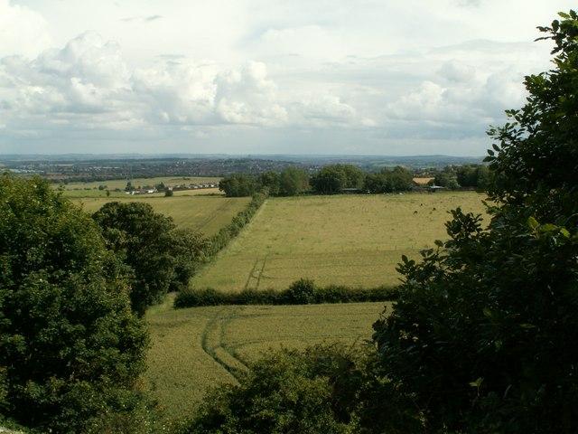 Wheatley Wood to Warren Lane