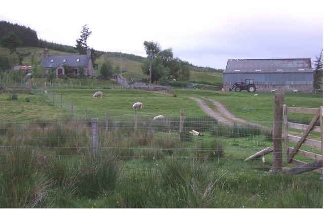 Point farm