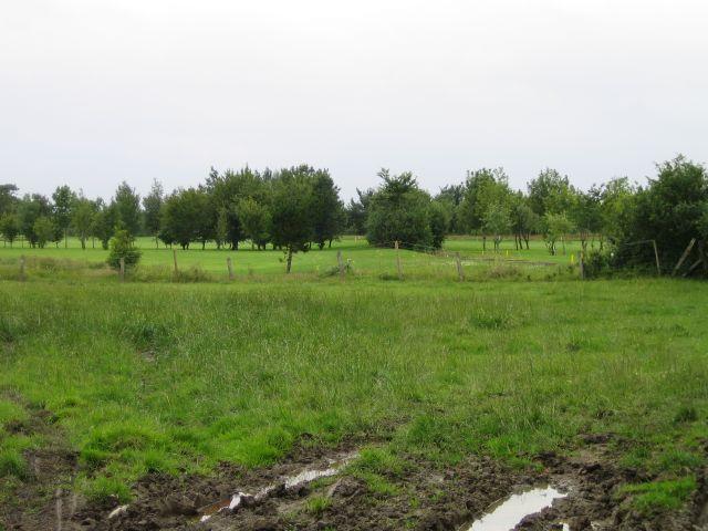 Long Sutton Golf Course