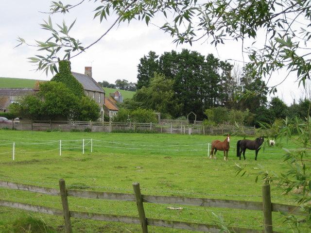 Plot Dairy Farm