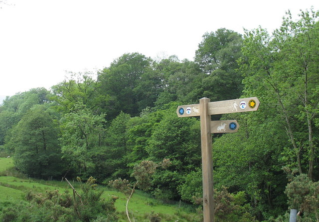 Signpost and woodland