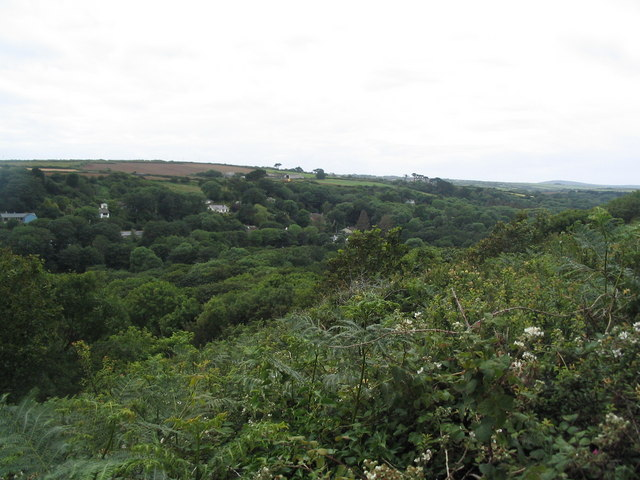 View into Lamorna Valley