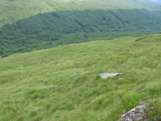 Hillside of Ben Donich