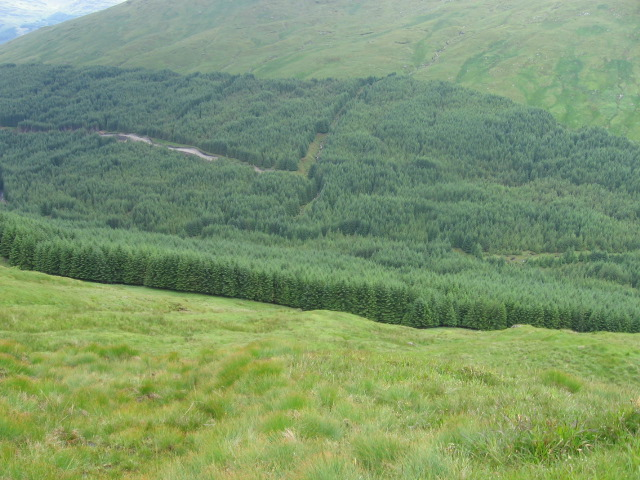 Hillside of The Brack towards Ben Donich