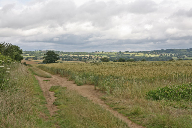 Looking East from the bridleway towards Severnlodge Cottage, and the Severn Valley beyond.