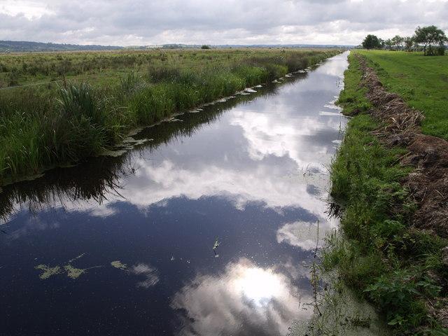 Drain on Kings Sedgemoor