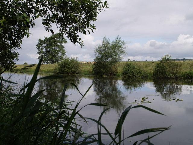 Kings Sedgemoor Drain