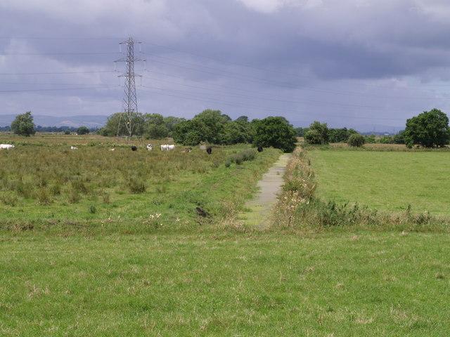 Drain on King's Sedgemoor