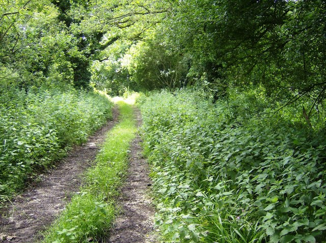 Footpath from Pagham Farm