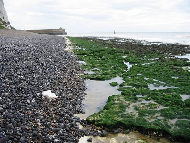 Looking N along the shore near Kingsdown