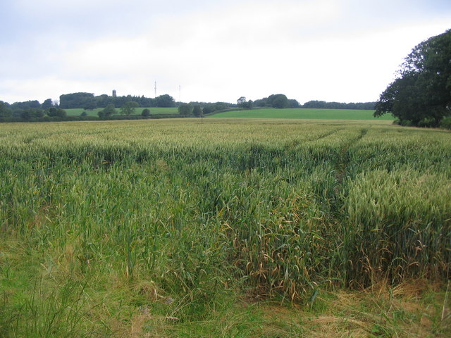 Mendip cropland