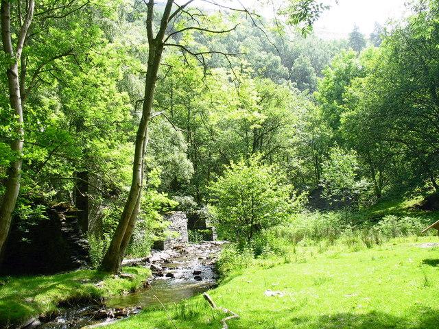 Nant y Pandy stream below the mill