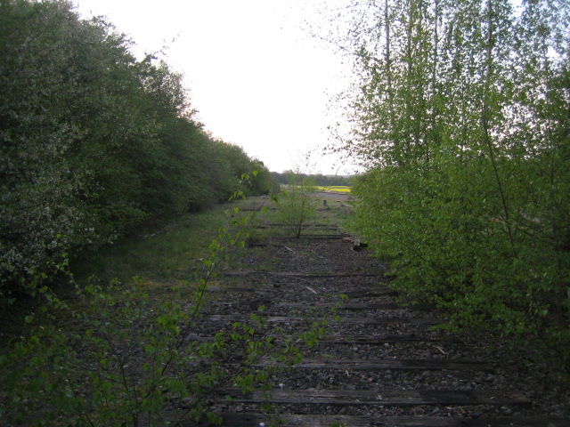 Dismantled railway looking north 3