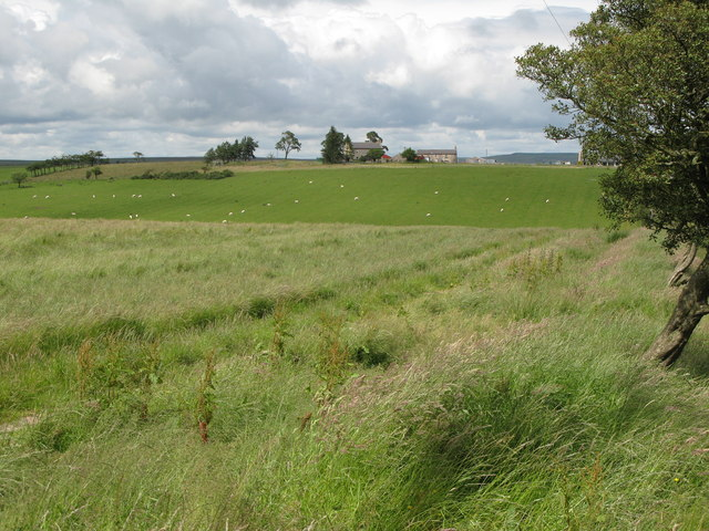 Track and pastures near Crossridge